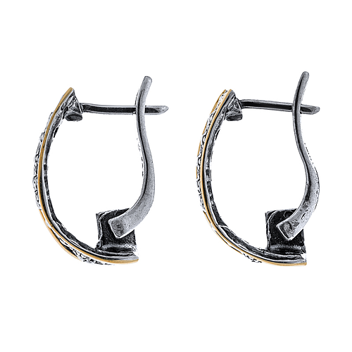 Silver and Gold Earrings